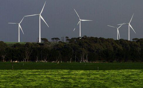 China Tracks Errol Flynn to Tasmania in Quest for Wind