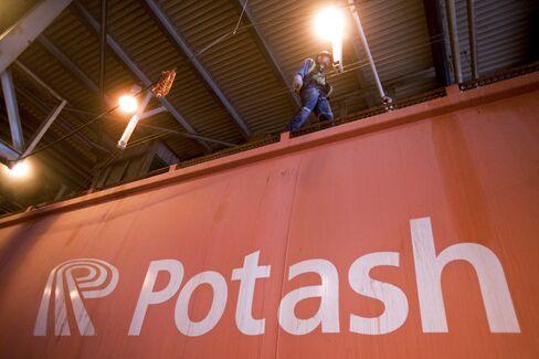 China Has No Application on Potash Bid