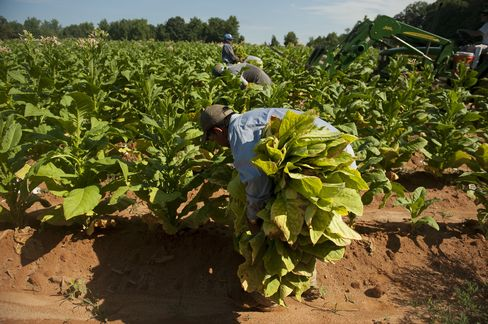 Tobacco Debt Beating Market Seen Losing on Tax Rise