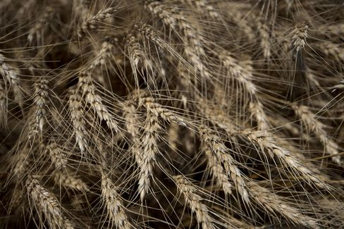 Wheat Fell 10 Percent This Year
