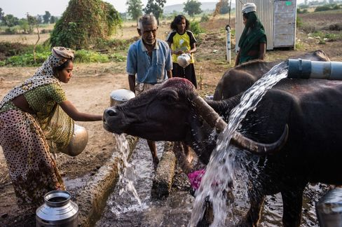 Death in Parched Field Reveals India Water Tragedy
