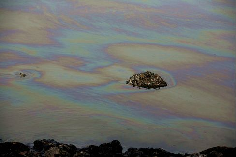 Oil Slick In Qingdao