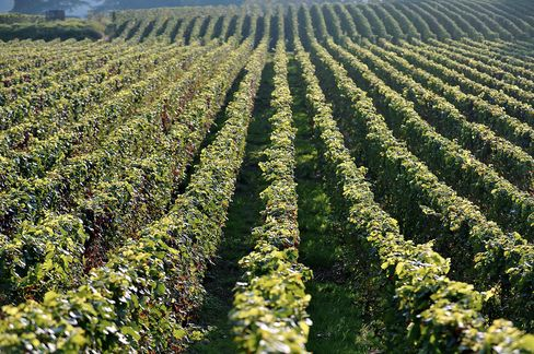 Lynch-Bages '08 Bordeaux Rallies to Reach $1,125 Four-Month High