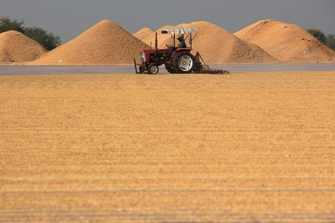 Rice Hoard Offers World Respite as Food Costs Surge