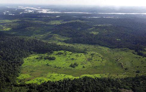 Brazil Rewrites Amazon Protections