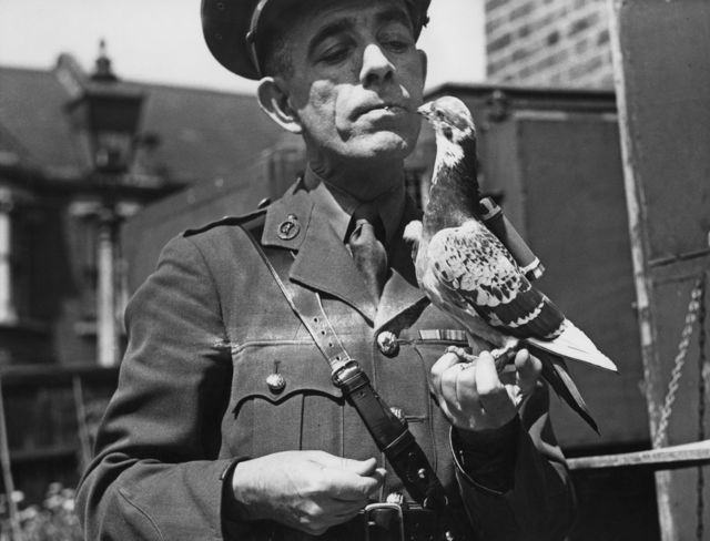 A recruit in the British Army Pigeon Service. Carrier pigeons also were used by the Rothschild banking family to convey coded market information. Source: Topical Press Agency/Hulton Archive/Getty Images