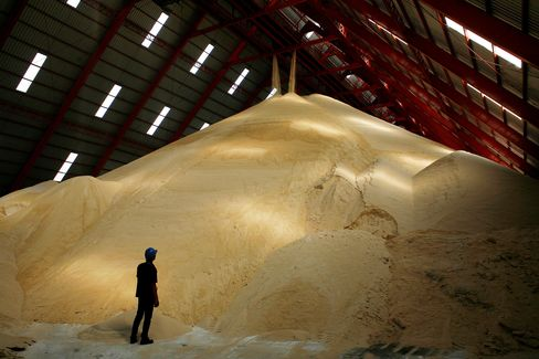 Sugar May Tumble Below 20 Cents on Surplus, F.O. Licht Says