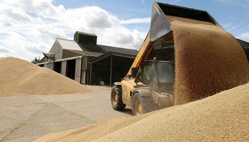 Wheat Advances on Concern Dry Weather in Europe