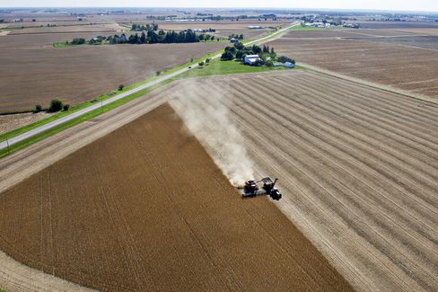 Farmland Boom Provides Bright Spot