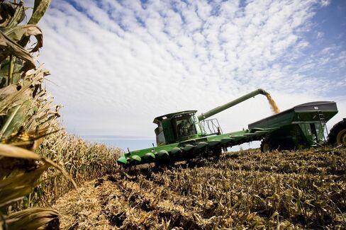 Corn Stocks Plunge as China Adds Brazil-Sized Crop to Usage