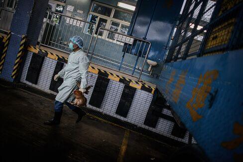 New Bird Flu Found to Be Resistant to Roche's Tamiflu Drug