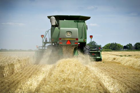 Grains, Soybeans Surge After Adverse Weather