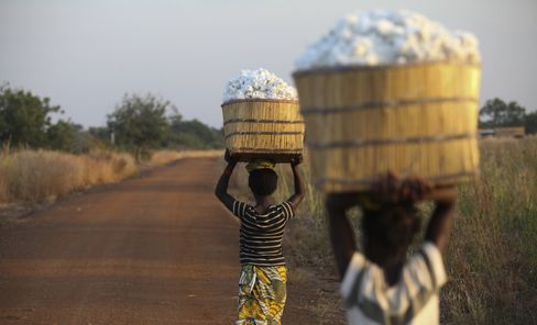 Clarisse Kambire, 13, a child laborer, left, and a fellow child laborer carry wicker baskets full of hand-picked fair-trade organic cotton back to the farmer's store house after a day's labor in fields near Benvar, Burkina Faso. Photographer: Chris Ratcliffe/Bloomberg