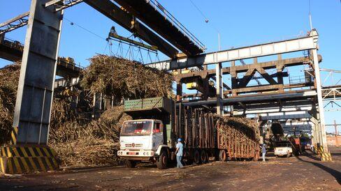 Sugarcane is Unloaded at Cosan's Industria e Comercio Facility