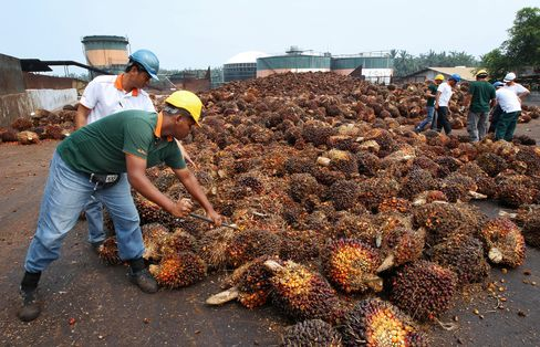 Palm Oil Futures Retreat From 18-Month High