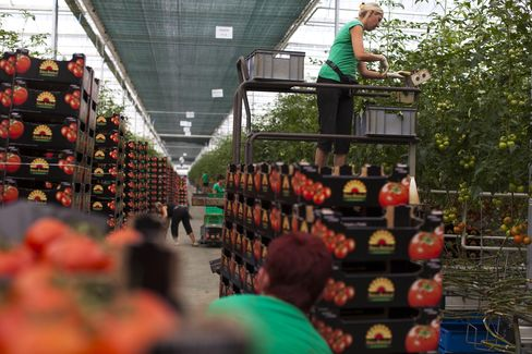 EU's East Braced for Sanctions Pain With Economies Set to Dip