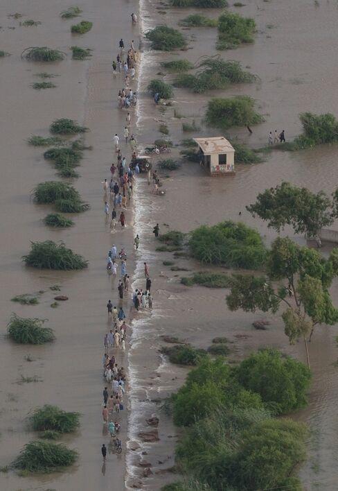 Pakistan Plugs Flood Defenses, Farmers Face Months Off Land