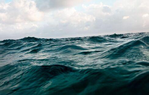 Oceans Acidifying Fastest in 300 Million Years