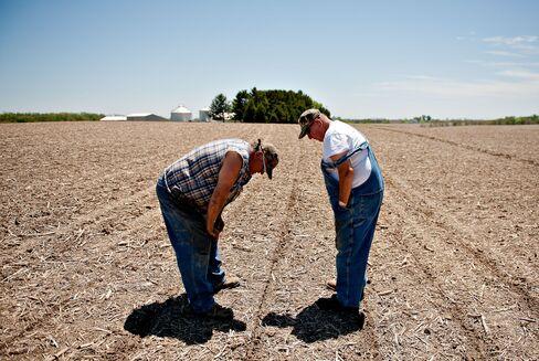 U.S. Farming