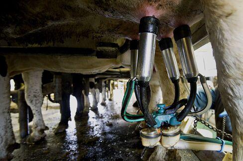 U.S. House Committee Chief Backs Plan to Avoid Dairy Price Jump