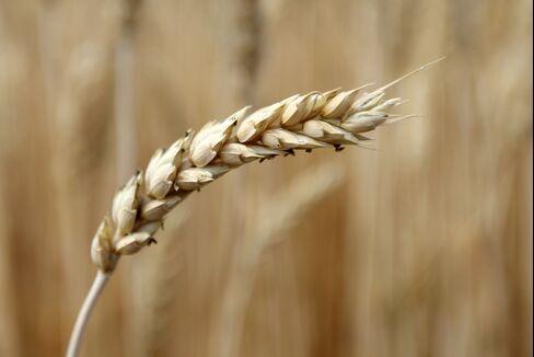 Yen Drop Means Wheat Gains as Foodmaker Profits Hit, Nomura Says