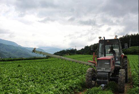 Farmer Takashi Nakajima