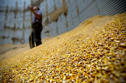 Commodities Headed for Bull Market as U.S. Drought Withers Crops