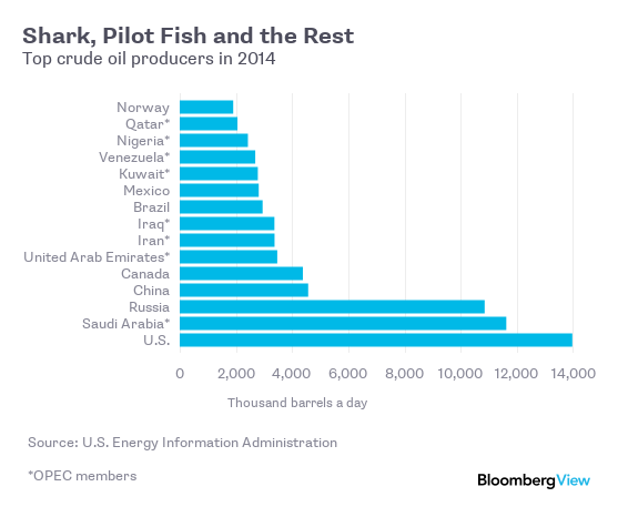 Shark, Pilot Fish and the Rest