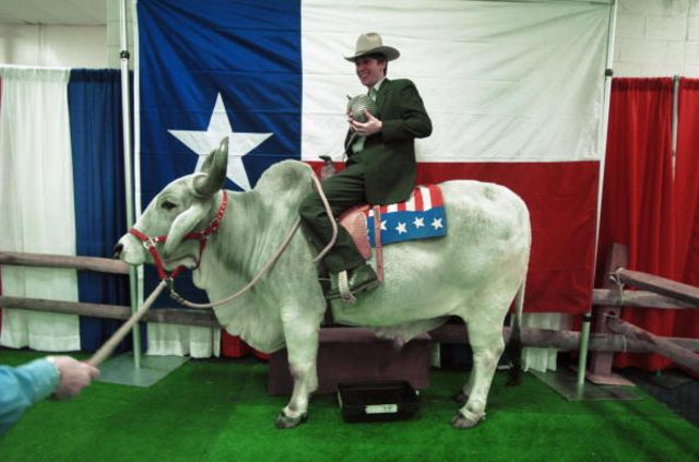 Toyota's first Texas-influenced model?Photographer:Roberto Schmidt/AFP/Getty Images