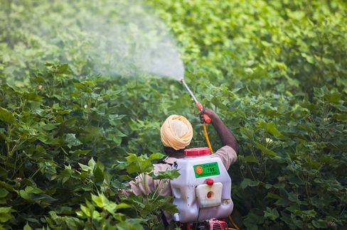 Mutant Crops Drive BASF Sales With Monsanto at Bay: Commodities