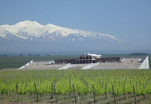 Clos de los Siete Winery