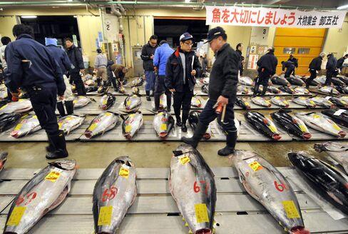 Sushi Restaurants Drop Japanese Fish on Radiation Fears