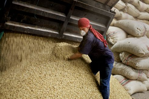 Coffee Supply Crunch Spurs Rally