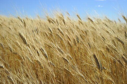 U.S. Farmland Boom May Peak After Five-Year Surge