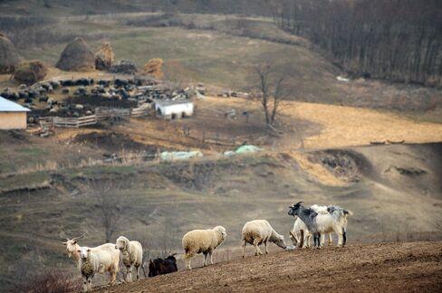 Shale Gas in Romania