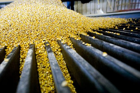 Corn Supply Slumps Most Since '75 on Ethanol Profit