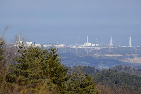 Fukushima Seeks Revival in Radiation-Free Farms With No Soil