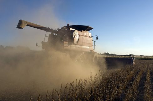 Soybean-Crop Bust Spurs China to Drain U.S. Supply
