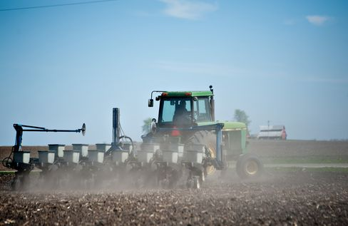 Heat Wave Wilts Corn as Supply Drops Most Since '96