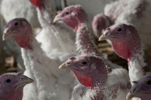 Target Turkey Dinner Costs Less Than Wal-Mart in Pricing Study