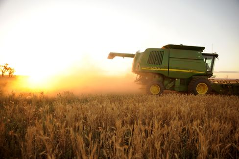 Wheat Harvest in Australia Seen Slumping to Lowest in Five Years