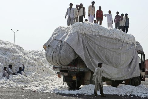 India's Ban on Cotton Exports