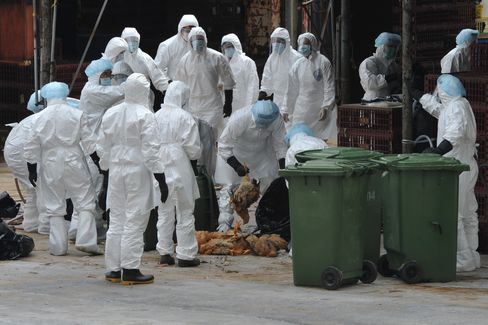Hong Kong Halts Live Poultry Sales After H5N1 Chicken Found
