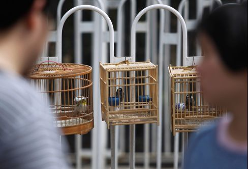 China Bird-Flu Death Toll Rises to 13 as H7N9 Virus Spreads