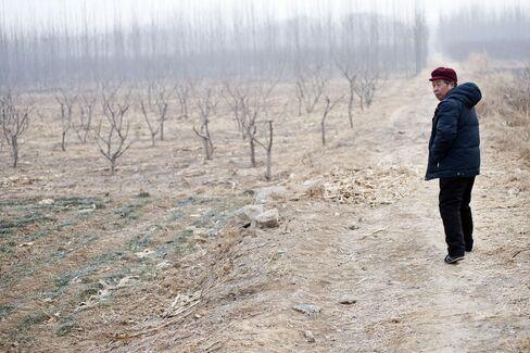 Shandong Drought