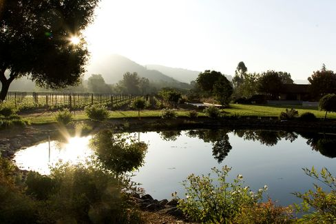Billionaire Resnick Buys Sonoma Valley Winery