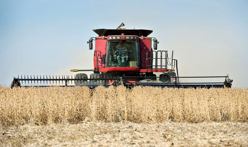 Speculative Wagers on Crops Reach Five-Month High