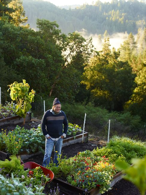 Manresa chef David Kinch at supplier Love Apple Farms in Santa Cruz, California.  Photograph: John Kernick