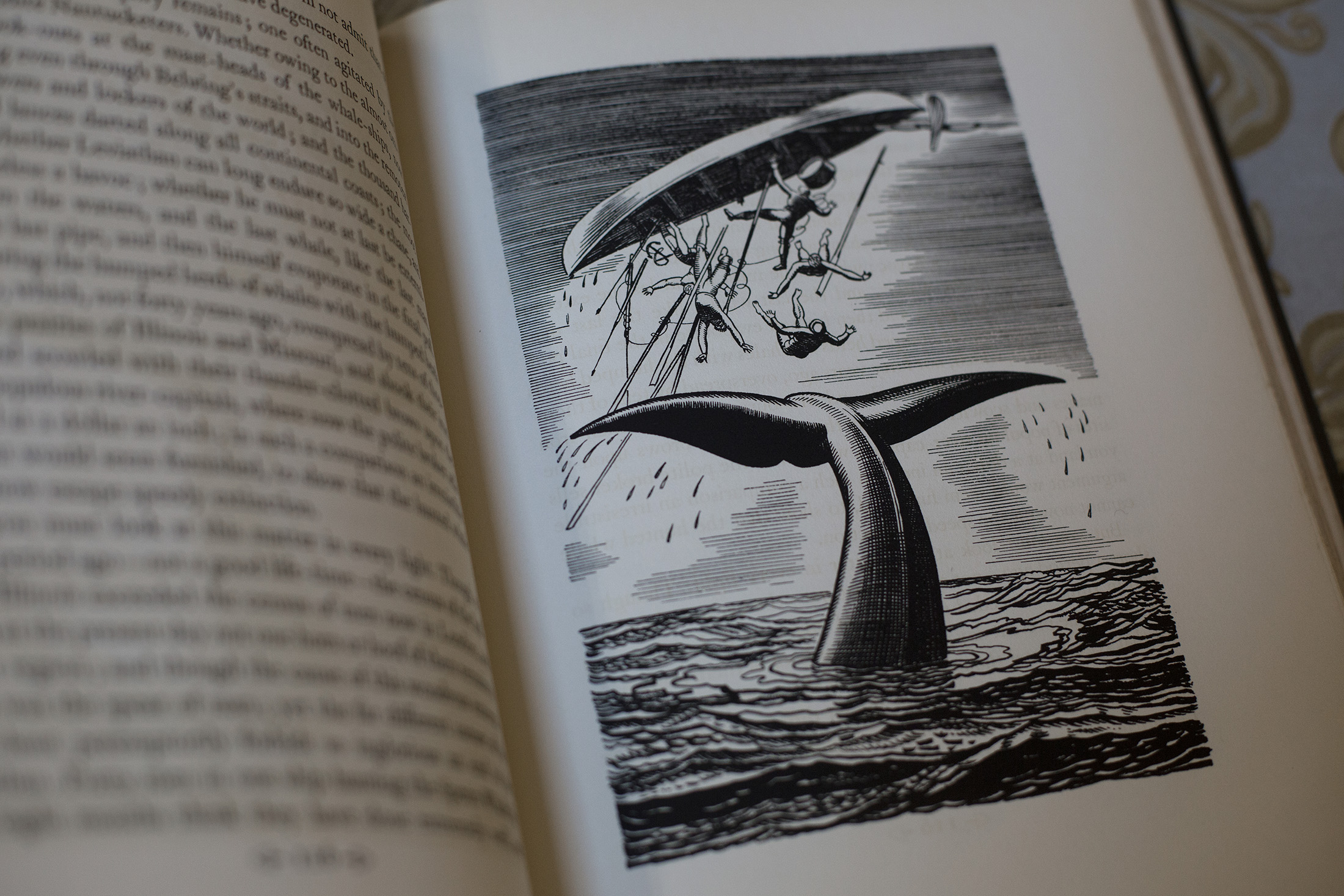 moby dick thesis In every great literary work there is a symbolic element that makes the author's message more detectable to his readers in herman melville's moby dick there is the.