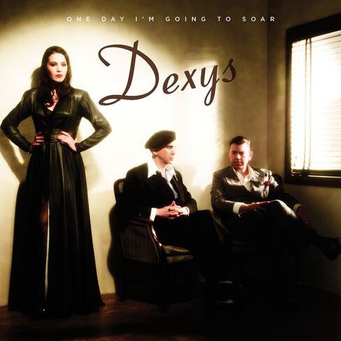 Dexys 2012 Album